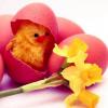 Καλό Πάσχα!!!